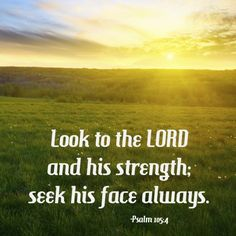 """""""Look to the LORD and his strength; seek his face always."""" -Psalm 105:4 [sunrise and blue sky over a field of green grass]"""