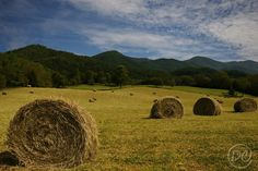 Haybales in the Foothills