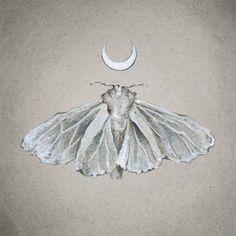 Lunar White Moth  Print of Oil Painting by tinyartshop on Etsy, $15.00