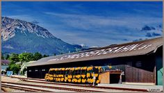 Discover the world through photos. Salamander, Bahn, Community, Mountains, World, Nature, Travel, Snow Mountain, The World