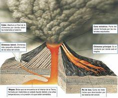 Un volcán es un punto de la superficie terrestre por donde es expulsado al exterior ese material que proviene del interior de la Tierra: el magma, los gases y los líquidos del interior de la tierra a elevadas temperaturas. Las regiones volcánicas de la Tierra están marcadas por los límites de los bloques continentales. La principal es la llamada Cinturón de Fuego del Pacífico. Los volcanes se forman en dos tipos de fronteras de placa: las convergentes y las divergentes #volcanes