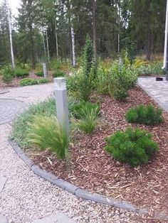 Referenssi Hyvinkään asuntomessupihan suunnittelusta Backyard, Gardening, Plants, Patio, Lawn And Garden, Backyards, Plant, Planets, Horticulture