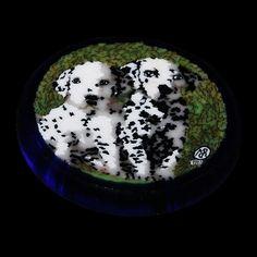 Dalmatians murrina by Mario Dei Rossi #1997 #glassart #italy