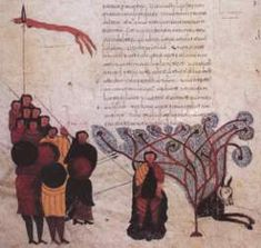 Biblia de San Isidoro de Leon, Biblioteca, Colegiata S. Isidoro, Leon, 960 - Death of Absalon