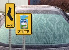 You can also use a stocking or sock filled with cat litter to prevent frost. Just leave it in your car overnight. The litter will absorb moisture (and odor!).
