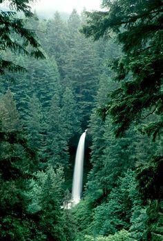 North Falls, Silver Falls St Pk, OR   © Marsha K. Russell