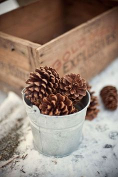 galvanized tin and pinecones