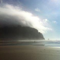 Oregon shores
