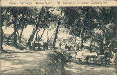 Καφενείο στη Ρευματιά Χαλανδρίου, 1930 Old Photos, Vintage Photos, Acropolis, Athens Greece, Old City, The Past, Memories, Black And White, History
