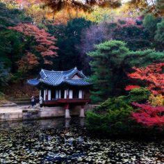 Buyongjeong in Autumn Changdeok-Palace Seoul, Korea 창덕궁 부용정의 가을  Thanks to Korean Beauty.