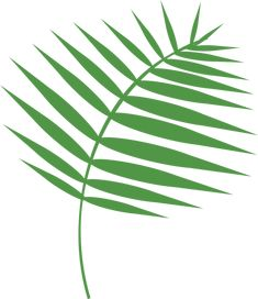 Free Image on Pixabay - Graphic, Palm, Palm Sunday Free Pictures, Free Images, Palm Sunday, Holy Week, Free Vector Graphics, Plant Leaves, 100 Free, Lent, Public Domain