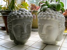 If you're sculpting head planters, it could be anyone's head. Or anything's.