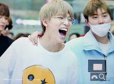 Dino looks so cute~ Woozi, Wonwoo, Jeonghan, Dino Seventeen, Seventeen Debut, Vernon Hansol, Seventeen Scoups, Love Your Smile, Happy Boy