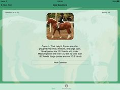 Around the World Pony Quiz - learn how to correctly perform exercises and movements - an app for riders of all skill levels Educational Apps For Kids, Learning Apps, School Kids, High School, Interesting Facts About Horses, Horse Facts, Fun Facts, Exercises, Pony