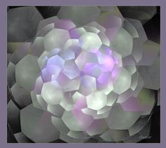 hortensia by *theaver fractals
