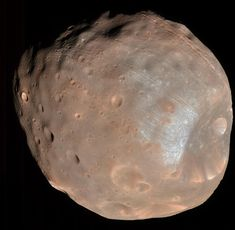 NASA Astronomy Picture of the Day 2015 November 22 Phobos: Doomed Moon of Mars This moon is doomed. Mars, the red planet named for the Roman god of war, has two tiny moons, Phobos and Deimos, whose. Cosmos, Mission Mars, Mars Moons, 2 Moons, Asteroid Belt, Planets And Moons, Astronomy Pictures, Milky Way, Astronomy