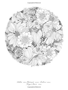 Floribunda A Flower Coloring Book Leila Duly 9781780677682 AmazonSmile Books