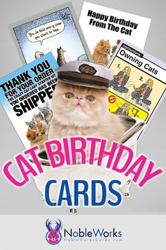 Everyone knows a 'cat person', how better to celebrate their birthday than with a hilarious cat themed birthday card! We have the best birthday & humor cards, free shipping every order!
