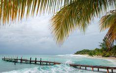 Bay i Hog Islands, Honduras Honduras Travel, Utila, Tegucigalpa, Turks And Caicos, Lonely Planet, Central America, Cool Places To Visit, Travel Photos, The Good Place