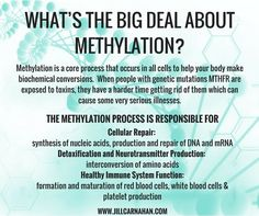 What's the Big Deal About Methylation?!