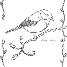 Talitiainen värityskuvassa. Teaching Aids, Sketch Painting, Bird Drawings, Kindergarten Teachers, Nature Crafts, Nature Animals, Drawing Techniques, Science And Nature, Adult Coloring Pages