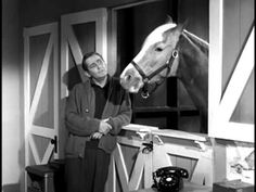Mister Ed S1 | Kiddy Park - YouTube