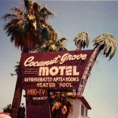 Beautiful neon sign, Van Buren Street in Phoenix, AZ haha Van Buren!It was cool back in the day now it;s just methheads and prostitutes.