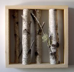 miniature birch forest