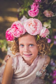 San Diego Photographer Heirloom Roses, Growing Roses, Color Photography, Flower Crown, All The Colors, San Diego, Mini, Flowers, Nature