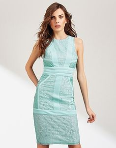 Womens pastel aqua lost ink lace insert bodycon dress from Lipsy - £55 at ClothingByColour.com