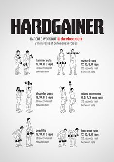 The Hardgainer is a complete upper body (arms + back) workout designed to primarily add size. The rep count is low so go for heavier weight. If you don't have dumbbells that are on hand, use smaller weights but do each rep as slowly as possible. Gym Workout Tips, Weight Training Workouts, Fitness Workouts, At Home Workouts, Darbee Workout, Rush Fitness, Aerobics Workout, Men's Fitness, Workout Routines