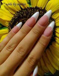 Stiletto nails French manicure