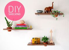 DIY Succulent Wall Mounted Shelving
