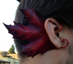 I just love leaves of any kind in any form....but this IS a bit much.  (aw) Maple leaf ears on Tristan © Maxamaris Hoppe