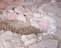 Making survival cement