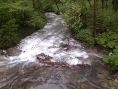 """Dzień 1- woda Potok w Zimniku (Lipowa) Słowo """"woda"""" można zinterpretować na kilka sposobów. Wahałam się między tym zdjęciem a wodą mineralną. Uznałam jednak, że ten widok jest o wiele ciekawszy.  #fitfotowyzwanie"""