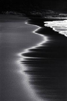 ☆ Seas Edge :¦: Underwater Photographer Wayne Levin ☆