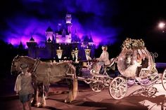 yes!!!!!! Disney fairytale cinderella wedding with the horse and carriage.
