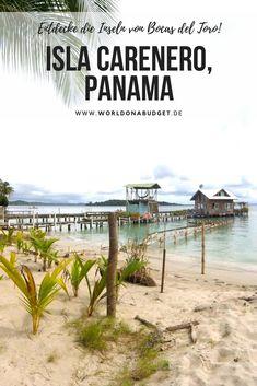 Die Isla Carenero gehört zu den #Inseln von #BocasdelToro in #Panama. In unserem ausführlichen Guide stellen wir dir die schönsten Inseln von Bocas vor - damit du dich leichter entscheiden kannst auf welcher Taruminsel in der #Karibik du deinen #Urlaub verbringen willst. Klick dich rein in unseren #Reisbericht...