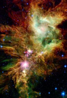 Stellar Snowflake Cluster - NASA