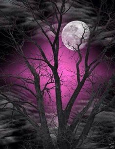 Beautiful Moon with Purple Sky