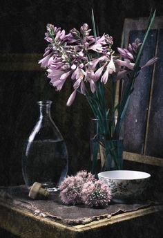#still #life #photography • photo: 2011 | photographer: Evgeniya Reva-Slezinger | WWW.PHOTODOM.COM