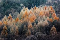 Winter is coming Photo by Hamos Gyozo -- National Geographic Your Shot