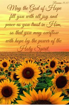 May the God of hope fill you with all joy and peace as you trust in him, so that you may overflow with hope by the power of the Holy Spirit. Romans 15:13
