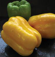 Pepper: Sweet Bell - Flavorburst