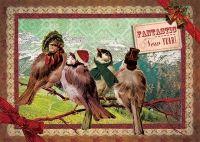 Postkaart Musjes