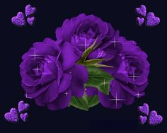 Discover & share this Animated GIF with everyone you know. GIPHY is how you search, share, discover, and create GIFs. Flowers Gif, Butterfly Flowers, Purple Flowers, Glitter Flowers, Purple Love, All Things Purple, Shades Of Purple, Purple Stuff, Gifs
