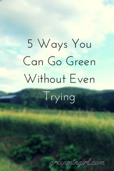 5 Ways You Can Go Green Without Even Trying | GreenMtnGirl