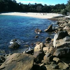 Shelly Beach, Manly NSW Northern Beaches Sydney #manly