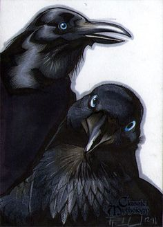 "In Norse mythology, Huginn (from Old Norse ""thought"") and Muninn (Old Norse ""memory"" or ""mind"") are a pair of ravens that fly all over the world, Midgard, and bring the god Odin information."